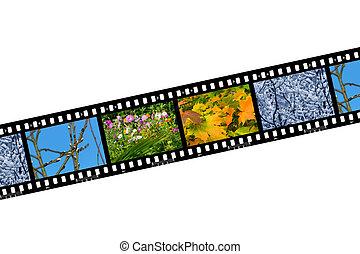 Nature seasons in film frames