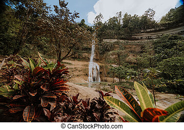 nature stamp with a beautiful waterfall on the island of bohol in the philippines