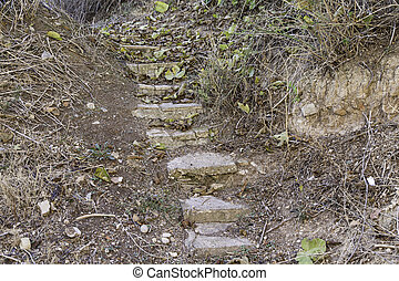 Nature stone stairs