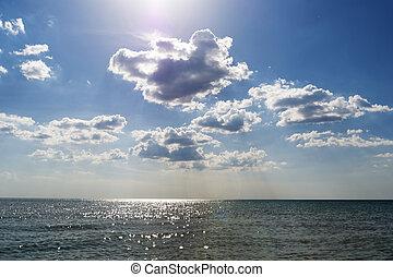 nature, sundown., clair, rivage, pendant, composition