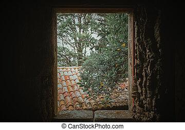 Nature through the window