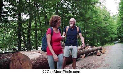 nature, touriste, marche, couple, hugging., sacs dos,...