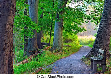 Nature Trail - A nature trail wooden walkway leading into ...