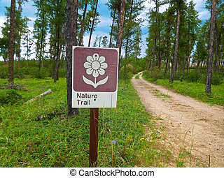 Nature Trail Sign in a Forest