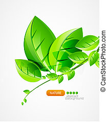 Nature vector background - Branch of green fresh leaves in...