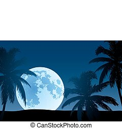 Nature_062-04(0).jpg - beautiful landscape (palm trees in...
