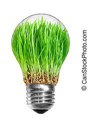 naturel, énergie, concept., ampoule, à, herbe verte, intérieur, isolé, blanc