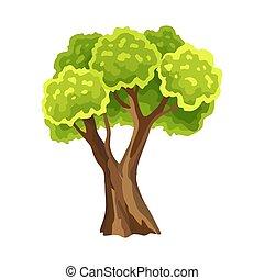 naturel, aquarelle, vert, leafage., arbre., arbre, illustration, stylisé, résumé, foliage.