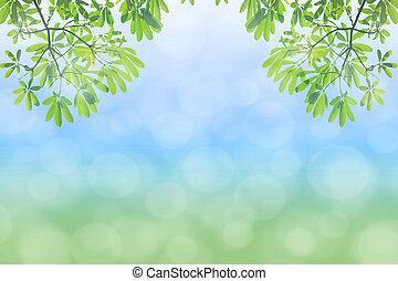 naturel, arrière-plan vert, selec