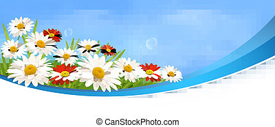 Naturel banner with red flowers and daisies  Vector