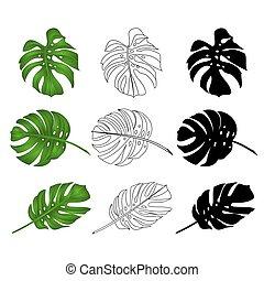 naturel, contour, philodendron, feuilles, vector.eps, exotique, silhouette