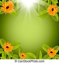 naturel, fleurs, arrière-plan vert