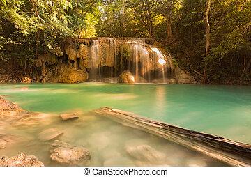 naturel, forêt, profond, chutes d'eau