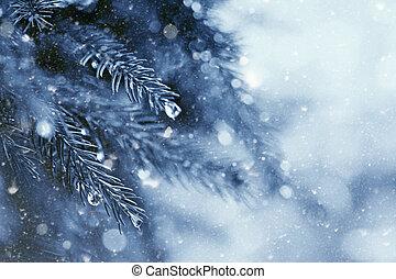 naturel, hiver, résumé, arrière-plans, tôt, forêt
