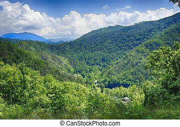 naturel, paysage, de, les, grandes montagnes fumeuses