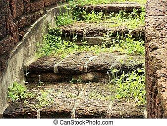 Naturel, pierre, escalier, jardin. Pierre, naturel, jardin ...