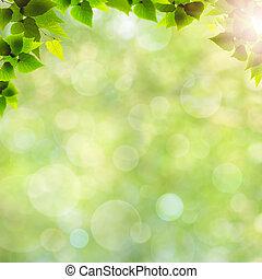 naturel, résumé, Arrière-plans, feuilles, vert, conception, ton