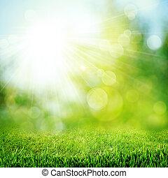 naturel, résumé, arrière-plans, clair, sun., sous