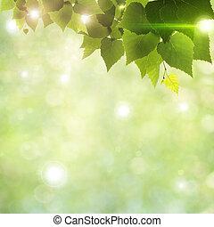 naturel, résumé, arrière-plans, lumière soleil, par, feuillage