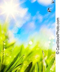 naturel, résumés, fond, printemps