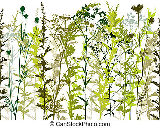 naturel, sauvage, usines, et, weeds.