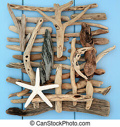 Natures Beauty - Starfish shell and driftwood abstract on a...