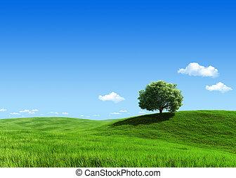 natureza, cobrança, -, prado verde, 1, árvore, modelo