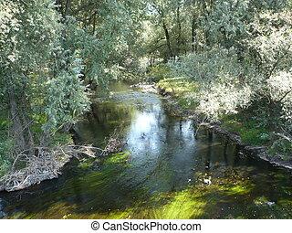 natureza, de, rio