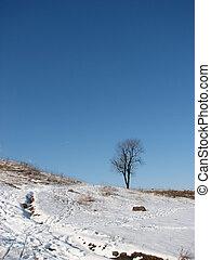natureza inverno
