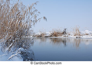 natureza inverno, paisagem