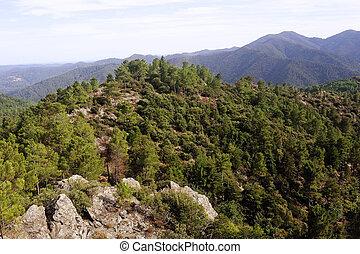 natureza, montanhas, de, a, cevennes