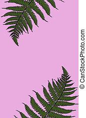 natureza, primavera, folhas, layout., tropicais, verde, padrão, criativo, concept.
