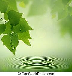 naturlig, abstrakt, bakgrunder, dew., morgon, design, din