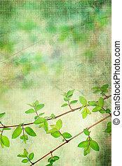 naturlig, grunge, bladen, bakgrund, artistisk, vacker