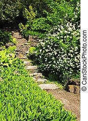 naturlig, sten trädgård, steg