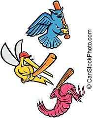 naturliv, baseball, mascot, samling, sporting