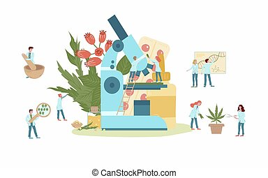 Naturophapy and traditional medicine, natural medicines and tablets of medicinal plant extracts, doctors with herbs, plants, microscope and healing products flat vector illustration. Homeopathy.