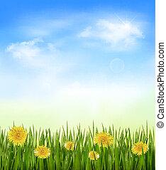 natuur, achtergrond, met, groen gras, en, bloemen, en blauw,...