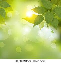 natuur, achtergrond, met, groene, lente, leaves., vector, illustration.