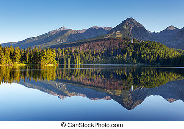 natuur, berg, scène, met, mooi, meer, in, slowakije, tatra, -, strbske, pleso