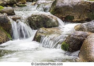 natuur landschap, met, bomen, en, rivier
