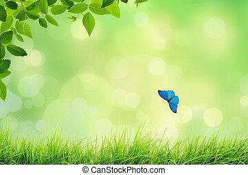 natuur landschap, met, gras