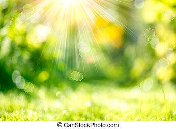 natuur, lente, benevelde achtergrond, met, sunbeams