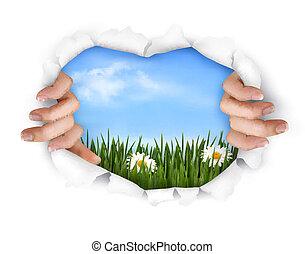 natuur, paper., vector, achtergrond, handen, het scheuren