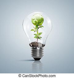 natuur, symbool, lamp, schoonmaken, bol, binnen