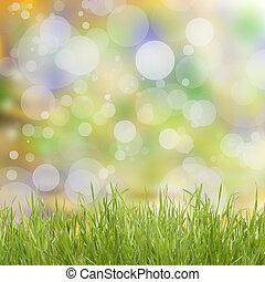 natuurlijke , achtergrond, met, gras