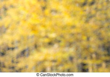 natuurlijke , gebladerte, gele, vaag, defocused, achtergrond