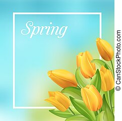 natuurlijke , lente, frame, gele, tulpen, bloemen