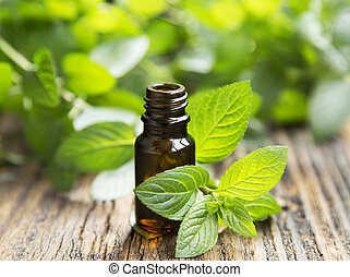 natuurlijke , munt, essentiële olie, in, een, weinig; niet zo(veel), glas fles