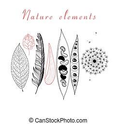 natuurlijke , set, van, anders, voorwerpen